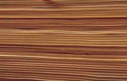 Alle Bilder: Holzabsatzfonds