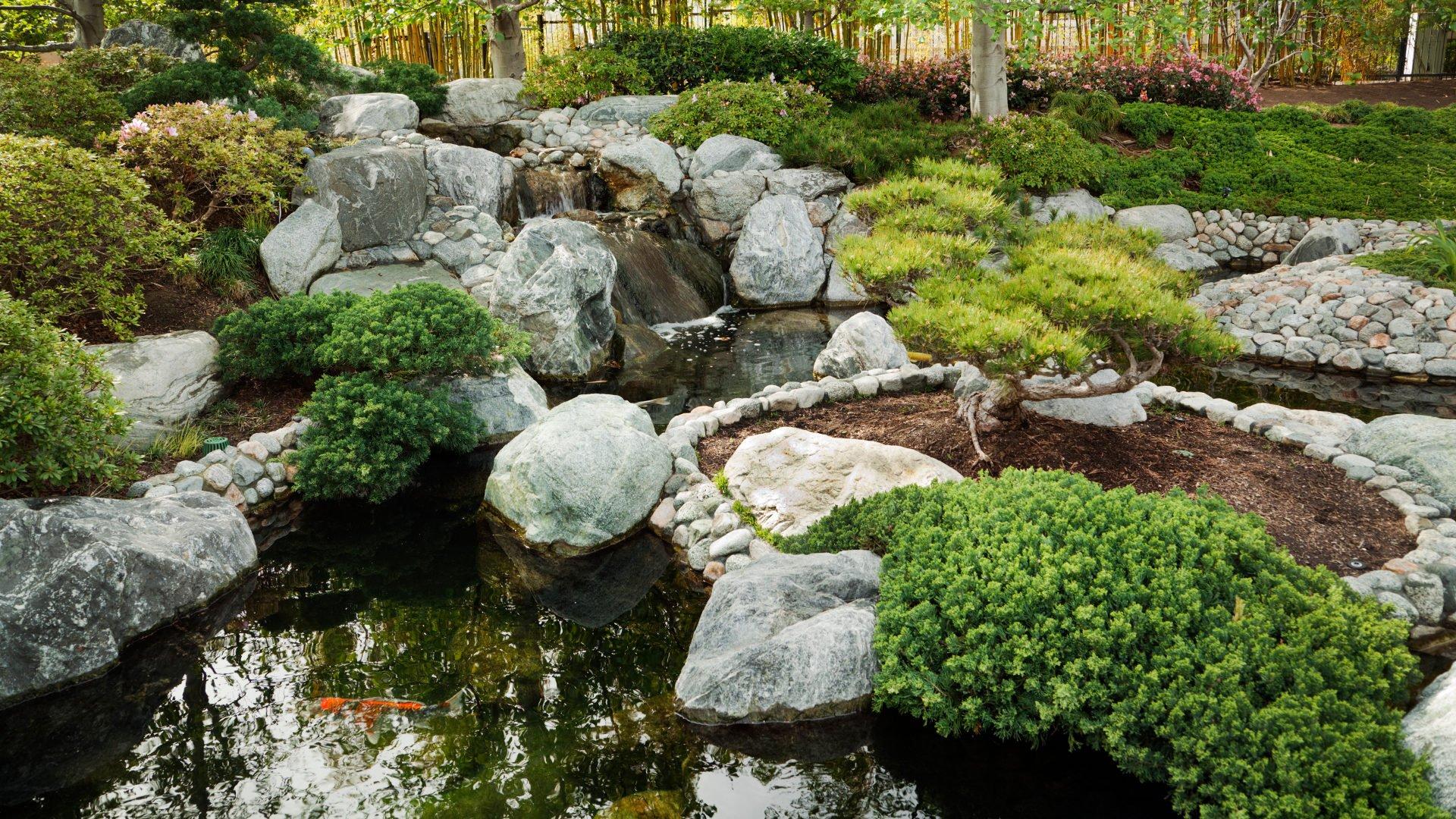 Japanische Gärten zeichnen sich u.a. durch Steine, Moose und Gewässer aus.