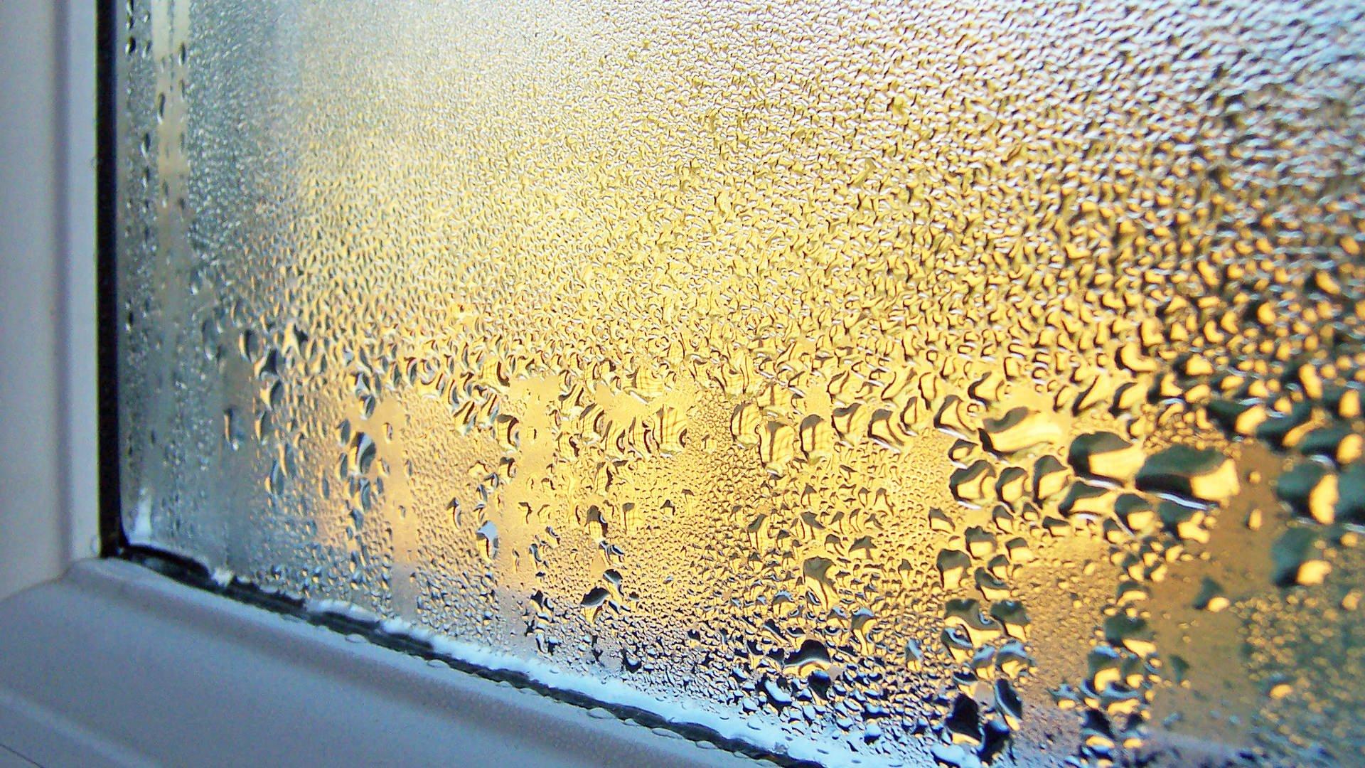 Das Raumklima kann durch eine zu hohe Luftfeuchtigkeit negativ beeinflusst werden.