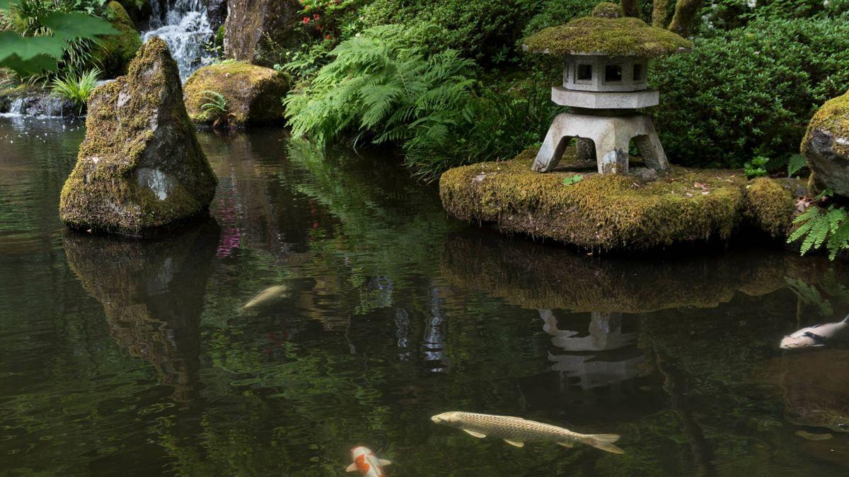 Auch ein Teich sollte bei der japanischen Gartengestaltung nicht fehlen.