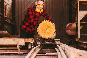 massivholzplatten.jpg