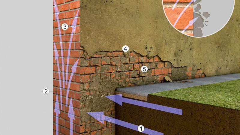 Sanierung von feuchte- und salzgeschädigten Fassaden